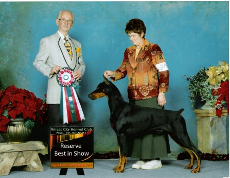Major's Reserve Best in Show